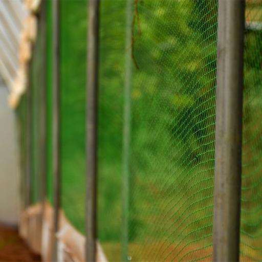 birds net by Grekkon Limited