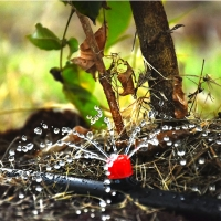 grekkon button drip irrigation