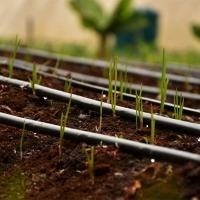 3 lines drip irrigation kit