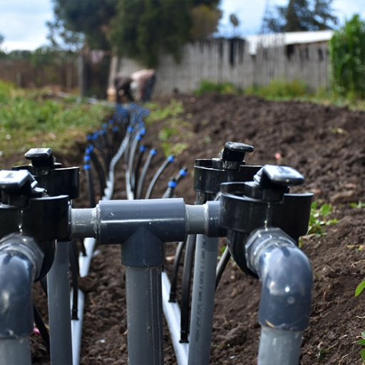 grekkon vegetable drip irrigation