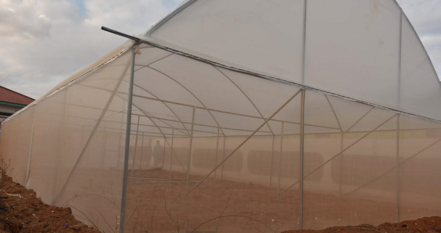 White insect nets on a greenhouse by Grekkon Limited
