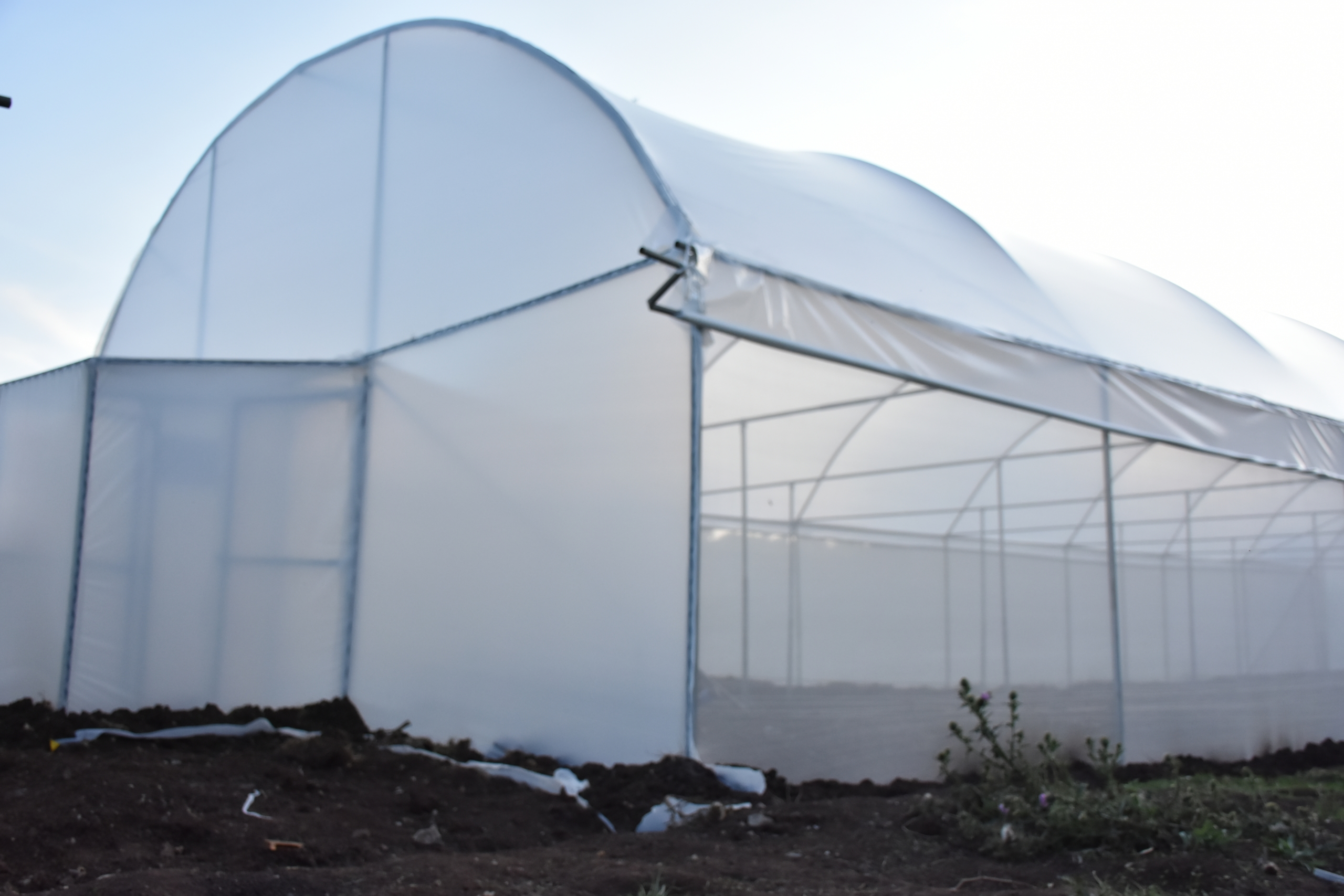 Greenhouse Polythene