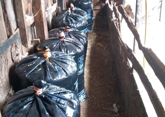 Silage bags by Grekkon Limited in a dairy farm