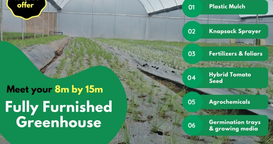Best greenhouse prices by Grekkon Limited