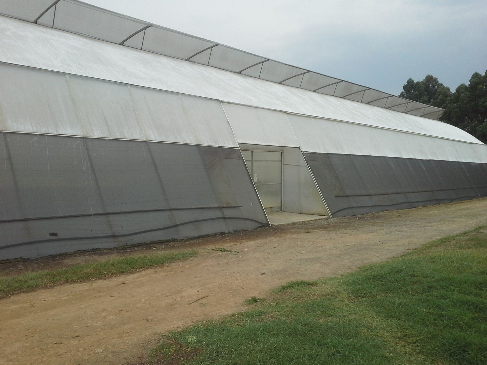 Best greenhouse prices. Large greenhouse by Grekkon Limited