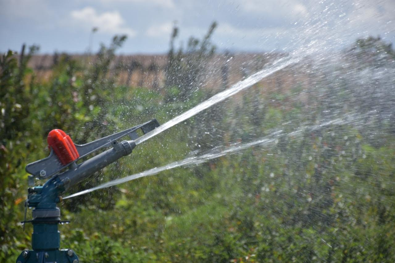 A rain gun sprinkler irrigating by Grekkon Limited  irrigating an apple crop orchard in Laikipia county, Kenya