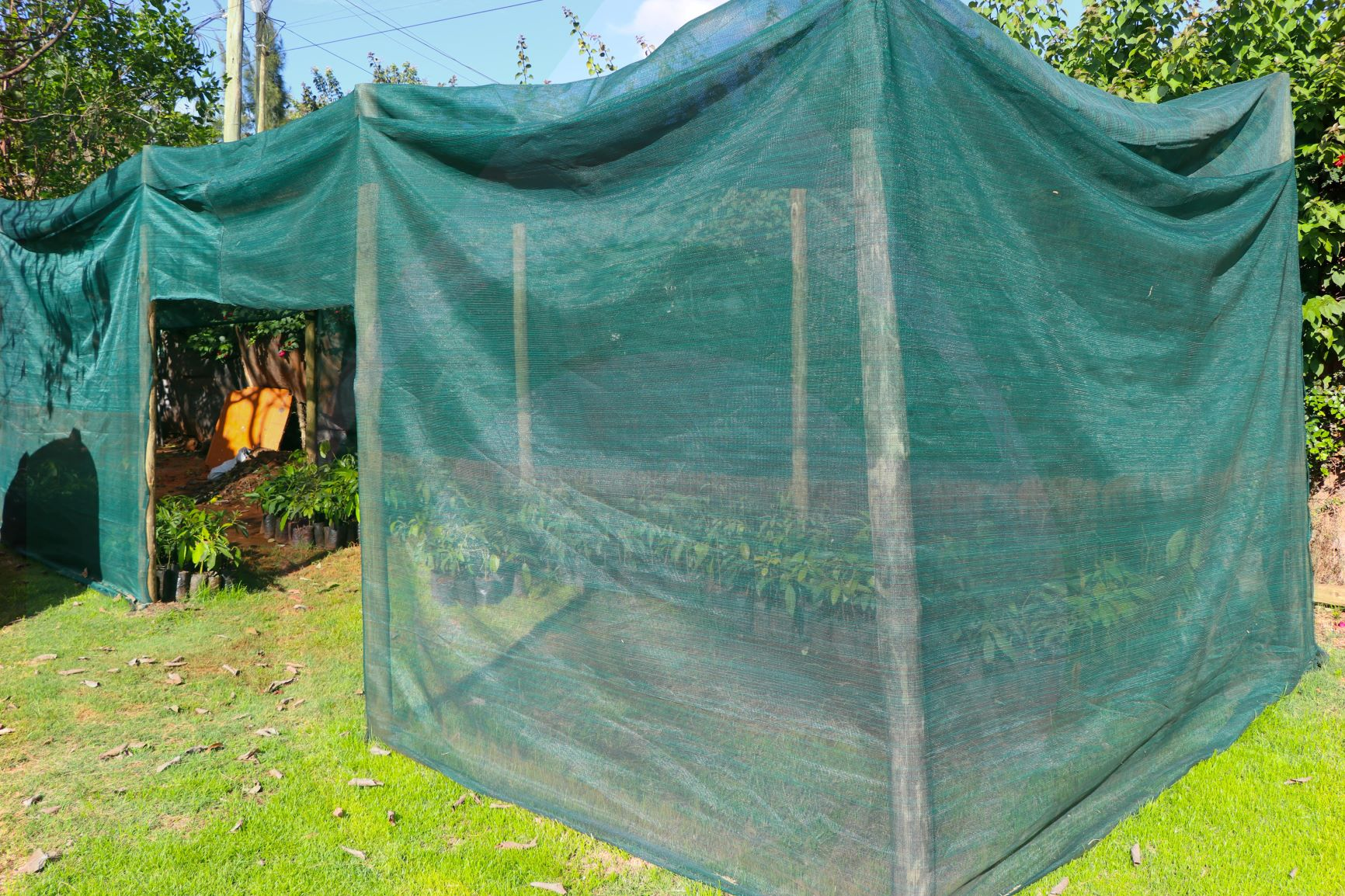 How To Choose A Shade Net