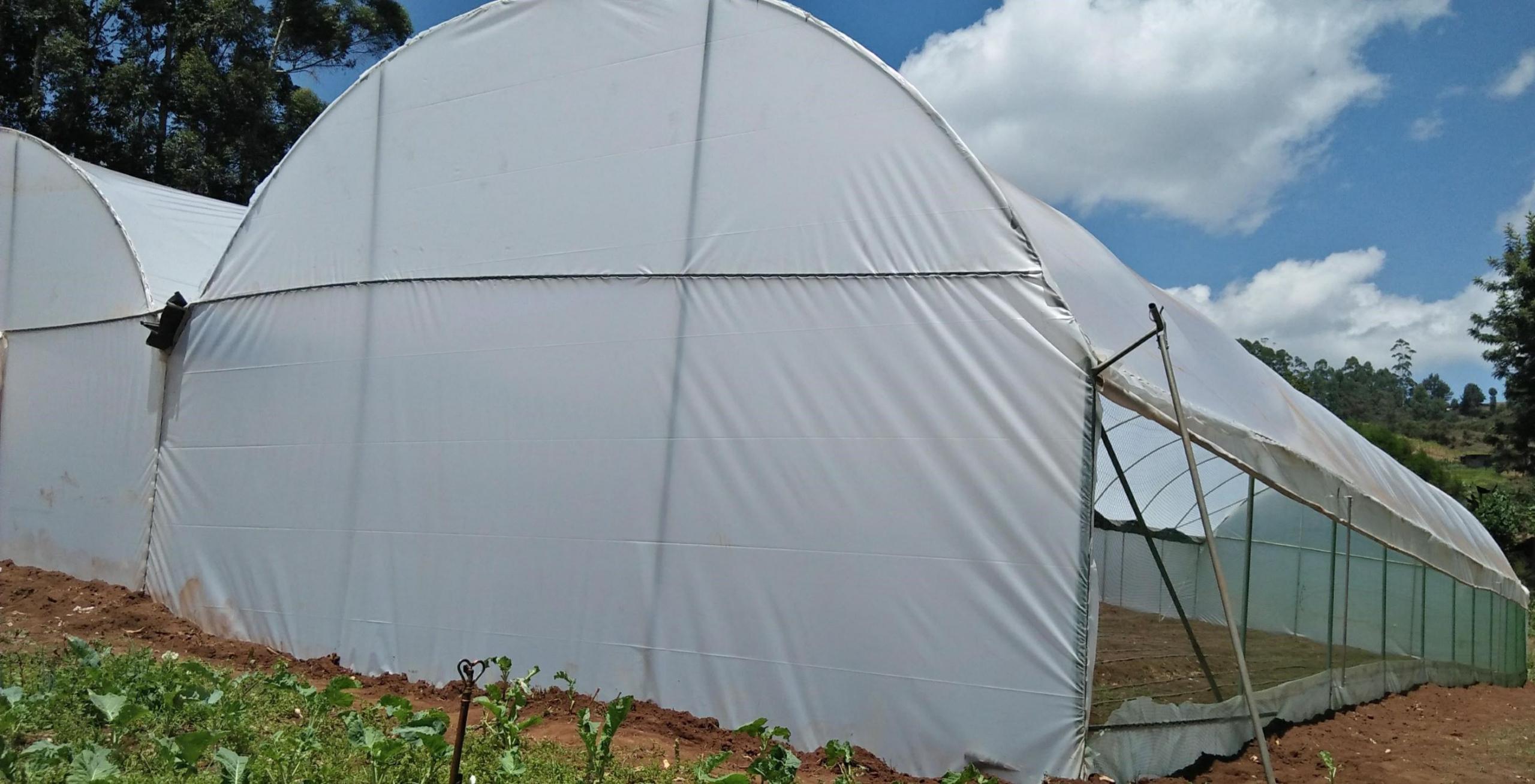 Greenhouse Polythene Price In Kenya