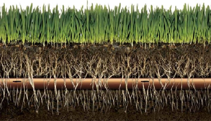 How Does Drip Irrigation Work